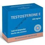 Тестостерон Э (oil) RADJAY 10 ампул по 1мл (1амп 250 мг)